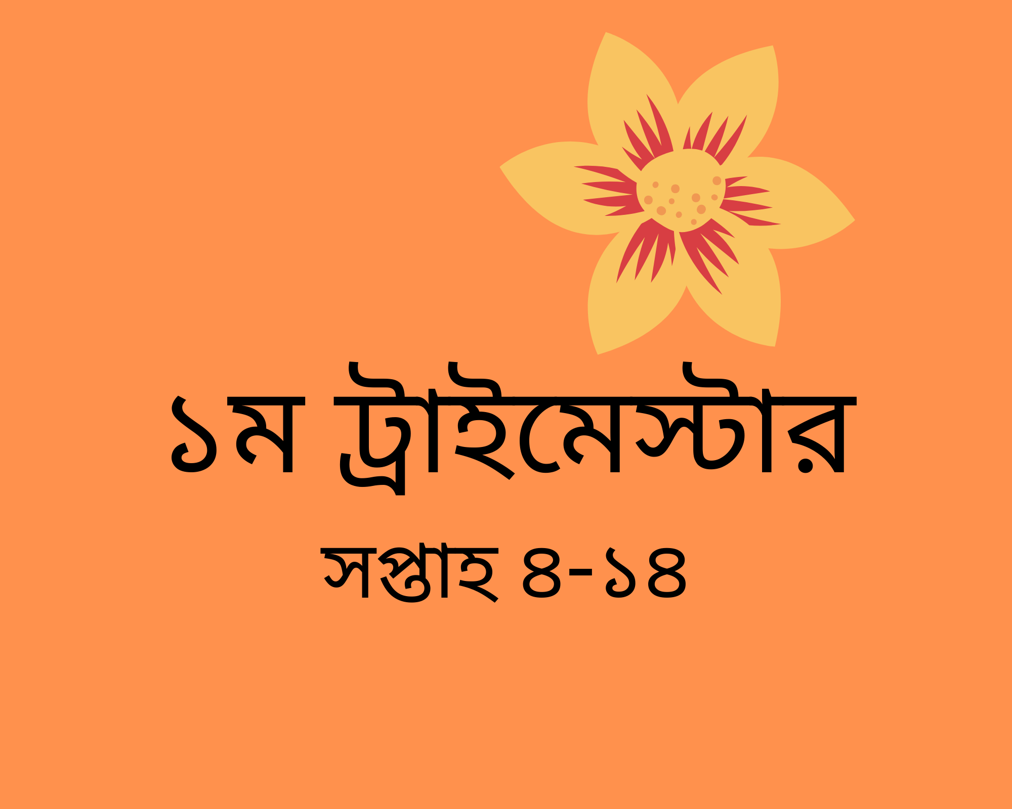 Click to find out in Bengali how to have wellbeing in the second trimester of your pregnancy.